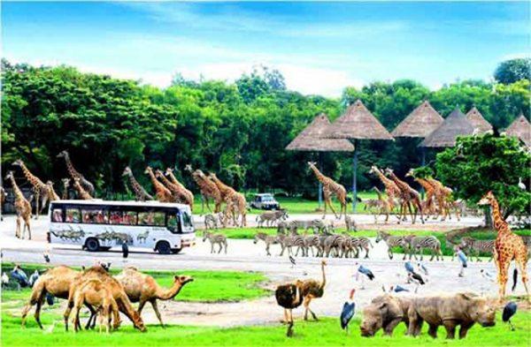 vinpearl-safari-phu-quoc