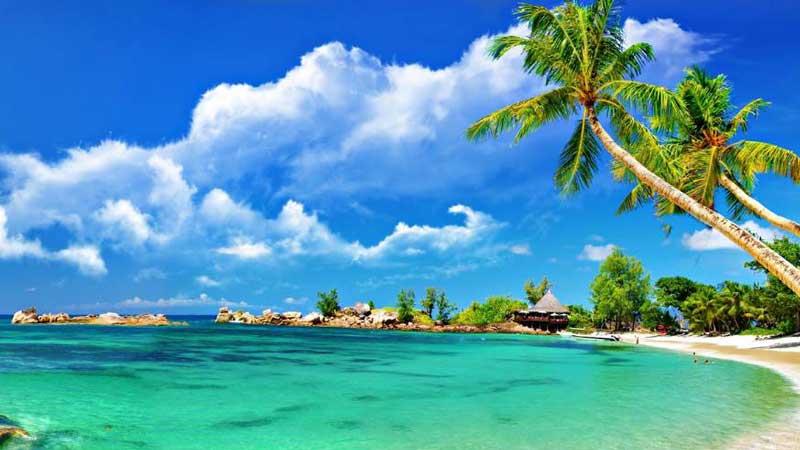 coast-villas-bai-truong