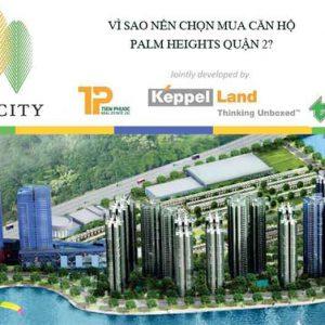 5-yeu-to-thanh-cong-tai-palm-city
