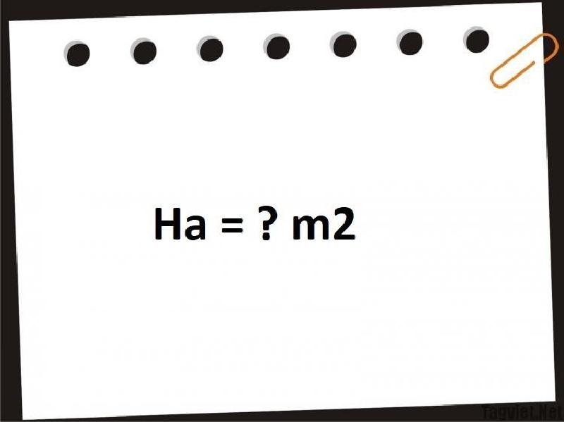 1 ha bằng bao nhiêu m2
