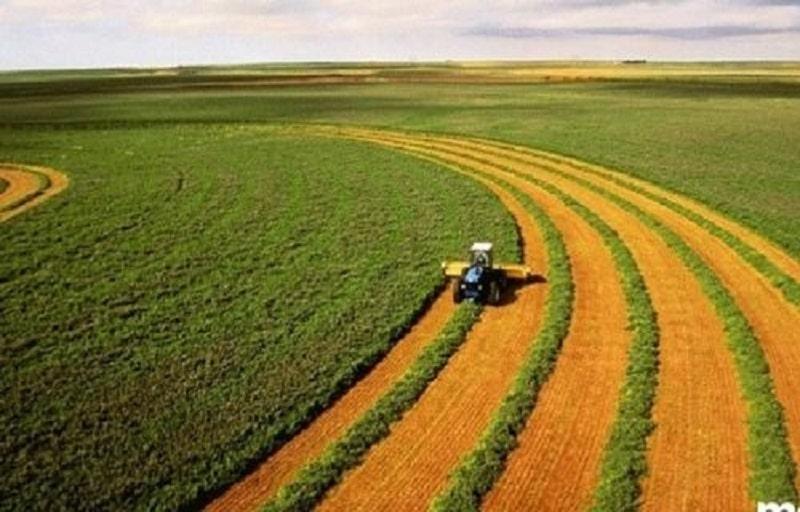 Các nhóm đất nông nghiệp