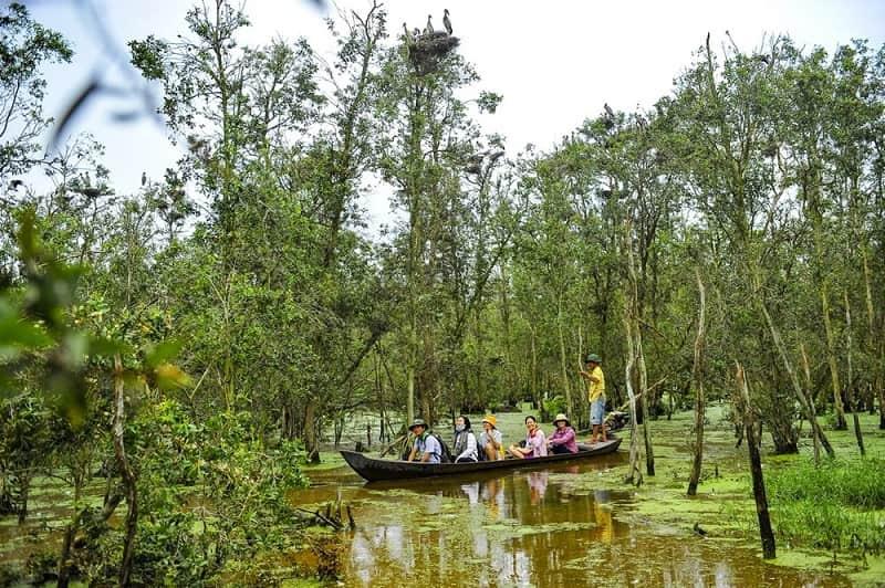 Đi xuồng tham quan vườn quốc gia Tràm Chim