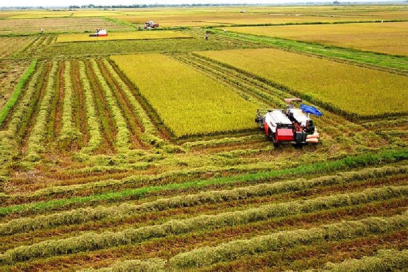 Diện tích đất rộng lớn ở Việt Nam