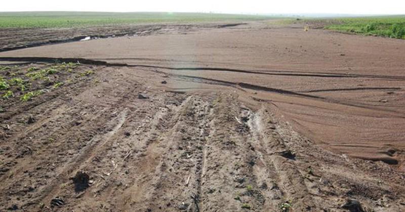 Điều kiện sử dụng được đất khai hoang