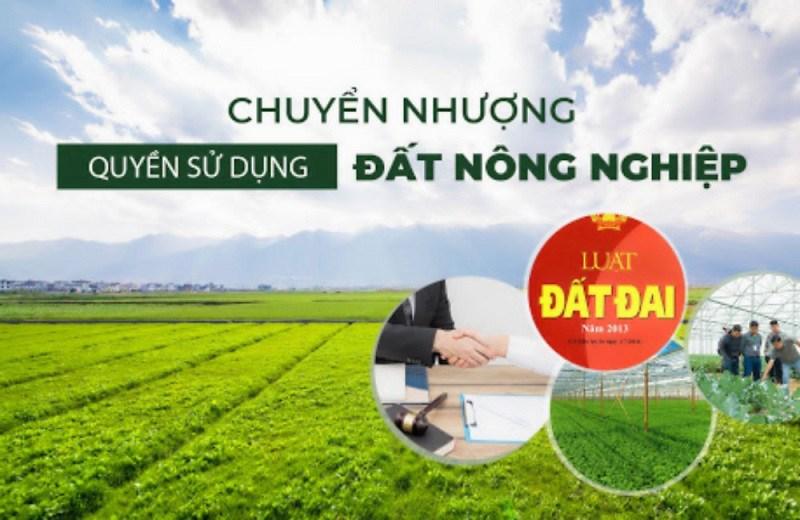 Thế nào là hợp đồng chuyển nhượng đất nông nghiệp?