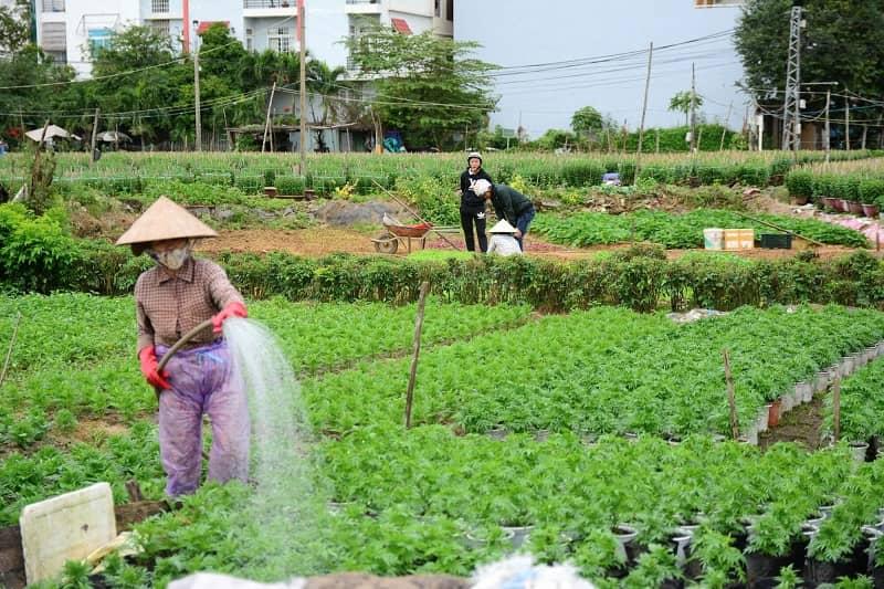 Nhiều chính sách hỗ trợ cho người dân khi bị thu hồi đất