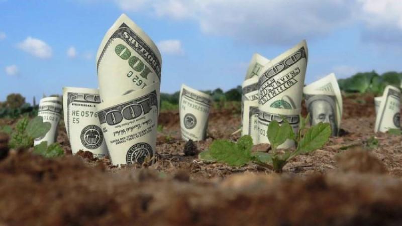 Tiền sử dụng đất là gì