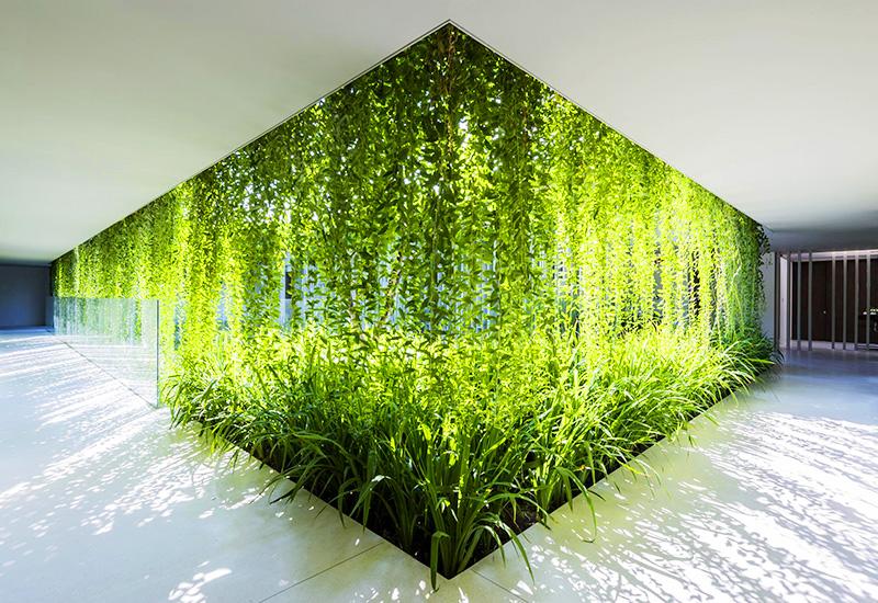 Tìm hiểu về kiến trúc xanh