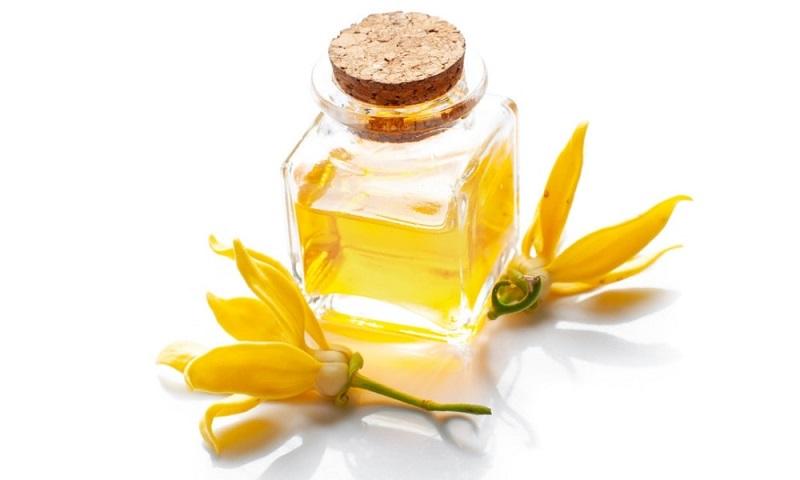 Tinh dầu ngọc lan tây rất tốt cho sức khỏe