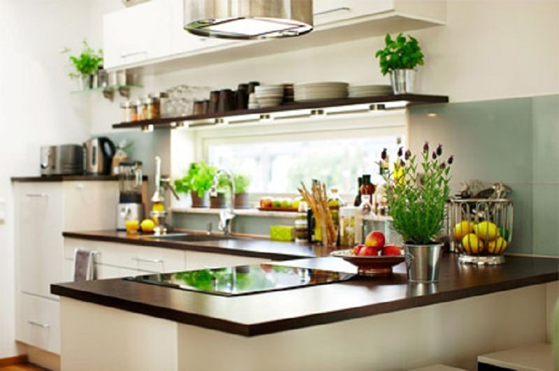 Trồng cây xanh cho căn phòng bếp