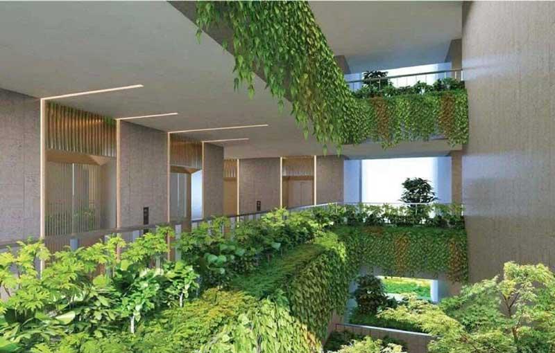 vườn treo dự án