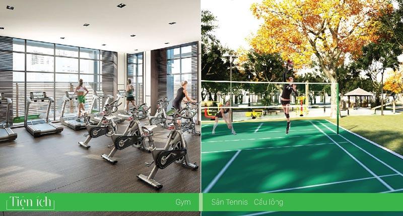 Gym, Tennis, Cầu Lông